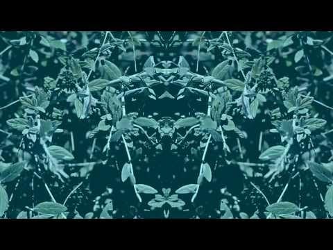 Edward Scissortongue - Fluids (Greenwood Sharps Remix)