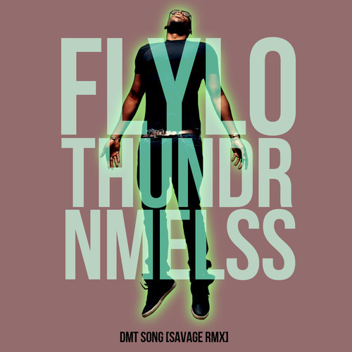 Flying Lotus + Thundercat + NAMELESS - DMT Song [SavageRMX]