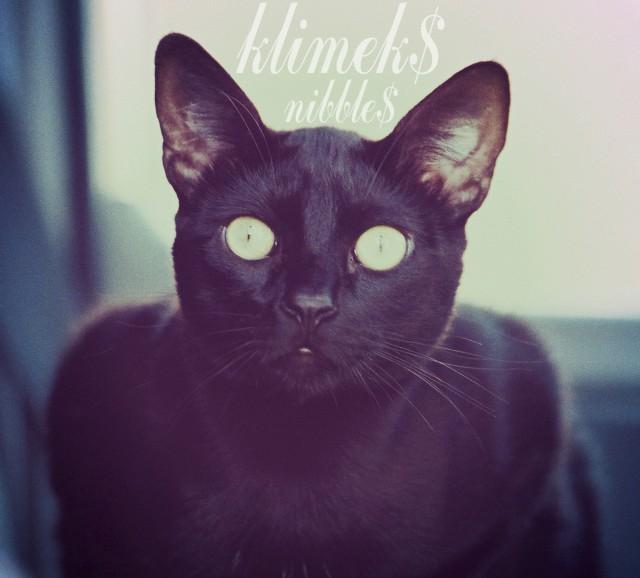 klimeks-nibbles